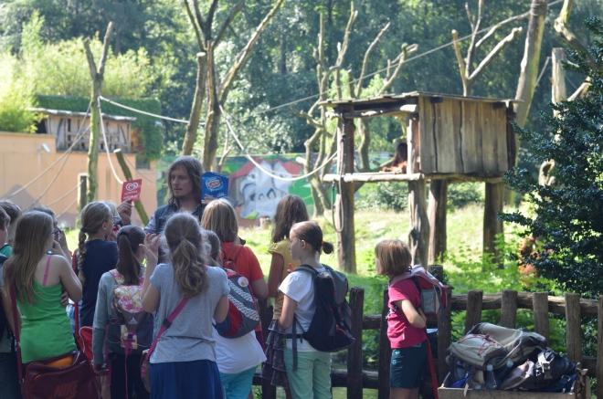 Bereits im Sommerferienprogramm im Zoo Dortmund hatten wir über Orang-Utans und Palmöl gesprochen: Orang-Utan-Woche im Zoo